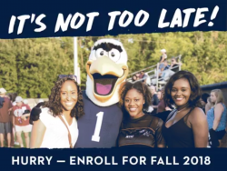 Photo of Students and the Georgia Southern mascot